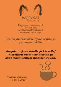 Flyer: Emmi Virtanen 19A (Koulutehtävä)
